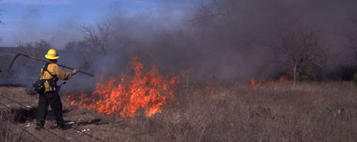 The Prescribed Fire Program at Balcones Canyonlands NWR.