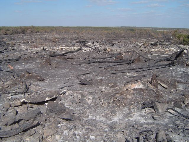 Rodgers plateau after the burn.